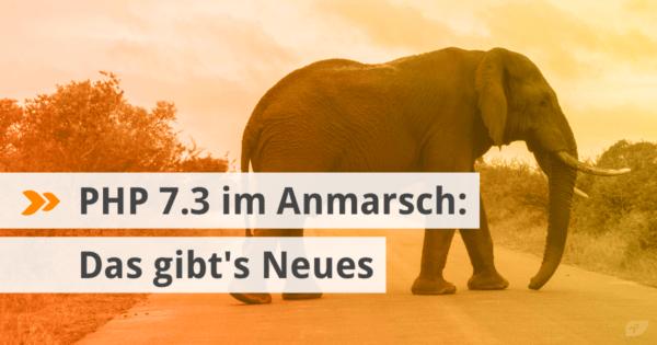 PHP 7.3 im Anmarsch: Das gibt's Neues
